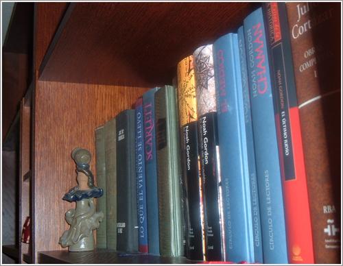 Libros de mi biblioteca